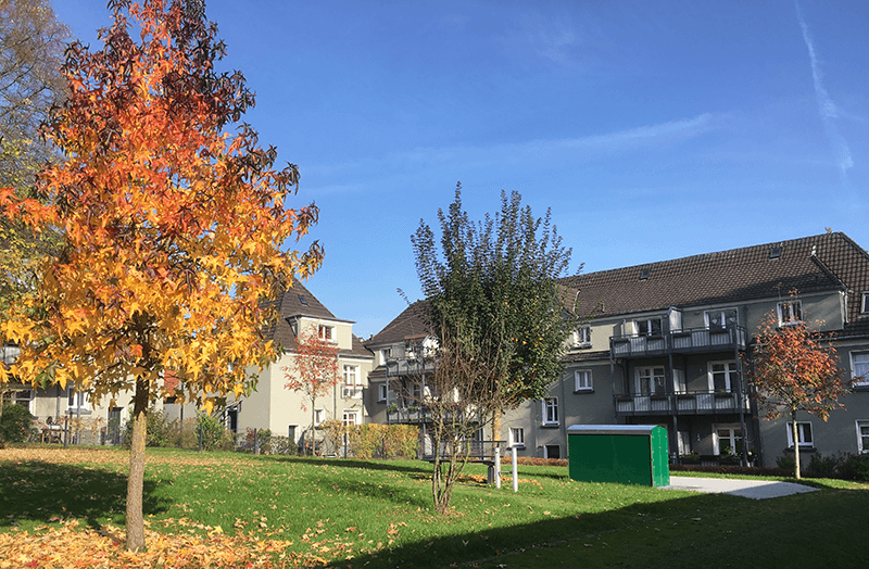 Siedlung Weegerhof (Solingen, Herbst 2017)