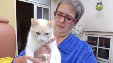 Michaela Ernst, Stadtwerke Solingen, mit Katze