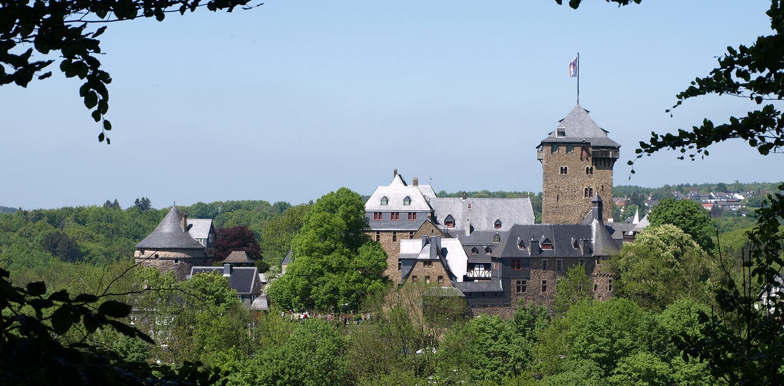 Schloss Burg Gesamtansicht